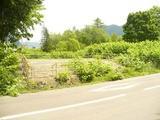 北海道夕張市南部東町84番外1筆 土地 物件写真