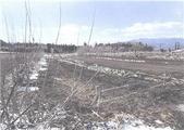 群馬県渋川市赤城町北赤城山字北平371番1 農地 物件写真