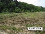 福井県福井市山内町33平等40番 土地 物件写真