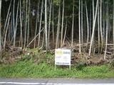京都府京都市伏見区桃山町遠山33-10 土地 物件写真