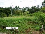 岐阜県中津川市蛭川字黒岩2670番9 土地 物件写真