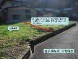 石川県加賀市河南町カ78番 土地 物件写真