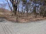 群馬県吾妻郡嬬恋村大字鎌原字群馬坂1776番22 土地 物件写真