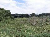 埼玉県さいたま市見沼区大字丸ヶ崎字下谷2123番9 土地 物件写真