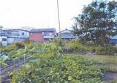 愛知県江南市宮田町泉234番 農地 物件写真