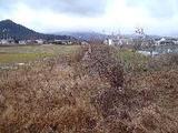 滋賀県高島市勝野字大芹407番1 土地 物件写真