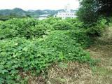 神奈川県厚木市小野字公所786番2 土地 物件写真