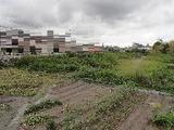 兵庫県明石市魚住町西岡字和田脇1926番1 土地 物件写真