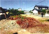 静岡県磐田市福田字午新田3786番 農地 物件写真