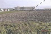 岡山県岡山市中区倉富字二割152番1 農地 物件写真