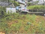 長崎県長崎市三原二丁目425番2 農地 物件写真