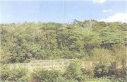 沖縄県国頭郡本部町字健堅駈原21番1 土地 物件写真