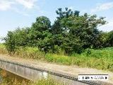 愛知県稲沢市矢合町椎ノ木650番 土地 物件写真