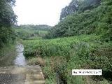 静岡県掛川市上内田字桶田1662番1 土地 物件写真