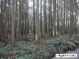 静岡県富士宮市北山字嶽澤7426番102 土地 物件写真