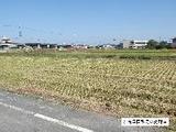 愛知県海部郡蟹江町大字須成字古苗代1712番1 土地 物件写真