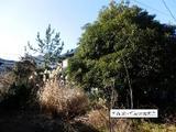 岐阜県海津市南濃町太田字大里342番 土地 物件写真