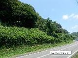 岐阜県各務原市須衛字稲田2259番1 土地 物件写真