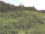 岩手県花巻市石鳥谷町新堀第64地割74番 農地 物件写真