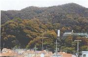 大阪府東大阪市日下町一丁目2054番1 土地 物件写真