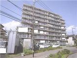 神奈川県綾瀬市蓼川一丁目1053番地1、1053番地7 マンション 物件写真