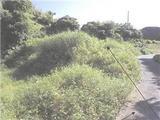 鹿児島県大島郡徳之島町亀津字金昆羅山4302番14 土地 物件写真