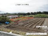 徳島県阿波市阿波町東長峰19-1 土地 物件写真