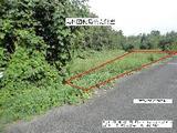 徳島県阿波市阿波町北西谷102北西 土地 物件写真