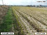 岡山県総社市総社字大溝1599番1 土地 物件写真