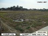 岡山県総社市小寺字川原443番1 土地 物件写真