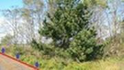 秋田県能代市落合字上釜谷地218番 土地 物件写真