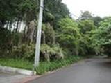 静岡県沼津市足高字尾上441番1232,441番1233 土地 物件写真