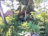 佐賀県佐賀市伊勢町238番〜241番 戸建て 物件写真