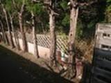 鳥取県境港市外江町字浜道1703番1 土地 物件写真