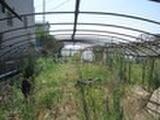 静岡県静岡市駿河区西平松字浜畑424番3 土地 物件写真