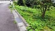 静岡県静岡市清水区蒲原一丁目4590番2 土地 物件写真