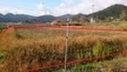 京都府福知山市字畑中小字島ケ下2327番 土地 物件写真