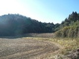 千葉県匝瑳市久方字カニ田2番・4番 土地 物件写真