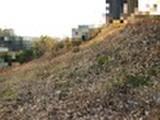 千葉県松戸市大橋字沖谷津524番11 土地 物件写真
