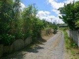 茨城県鹿嶋市大字平井字海岸1-208 土地 物件写真