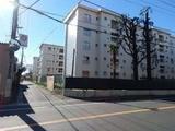 千葉県柏市旭町8-934-2-1-1外6筆 戸建て 物件写真