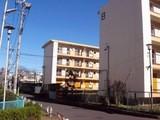 神奈川県川崎市中原区木月4-1904外1筆 土地 物件写真