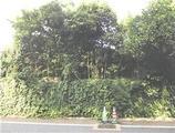 東京都目黒区八雲四丁目4番地5 戸建て 物件写真