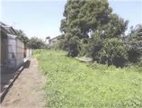 神奈川県南足柄市塚原字下産屋原2781番15 農地 物件写真
