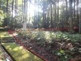 静岡県伊豆の国市奈古谷字笹築2205番422 土地 物件写真