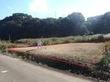 静岡県田方郡函南町平井字日焼412番外1筆 土地 物件写真