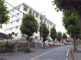 千葉県松戸市上本郷4599番地 マンション 物件写真