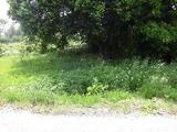 茨城県常陸太田市落合町西990番 土地 物件写真