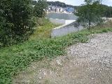 大阪府堺市南区畑1889番1 土地 物件写真