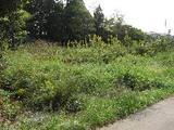 千葉県大網白里市清名幸谷字上野谷68番2 土地 物件写真